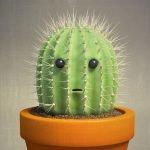 грустный кактус